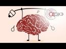 Вячеслав Дубынин: Мозг и движение