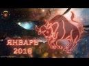 ГОРОСКОП на ЯНВАРЬ 2018 ТЕЛЕЦ ♉ Зодиакальный гороскоп на январь 2018 года для Тельца