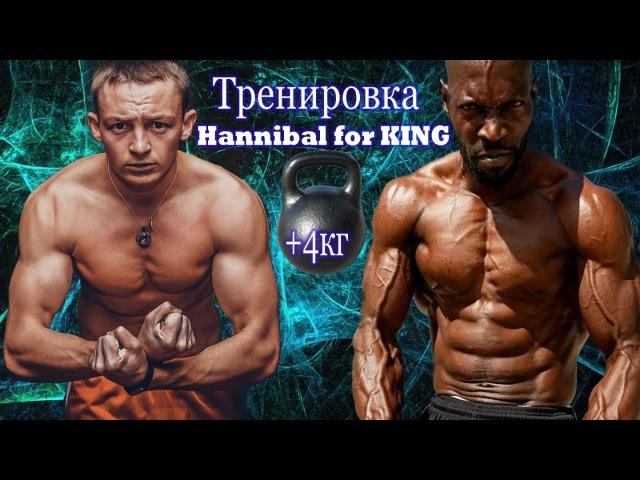 Hannibal for KING 4kg