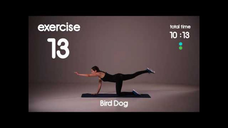 Beginner Cardio Core Workout with Medium Pace - No Equipment - 25s/15s 40s/20s
