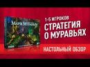 Настольная игра «МАРШ МУРАВЬЕВ». ОБЗОР: КАК ИГРАТЬ МНЕНИЕ March Of The Ants board game review