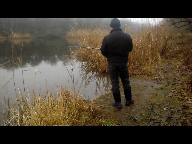 Лисичанск Стекольный ставок сошла щука