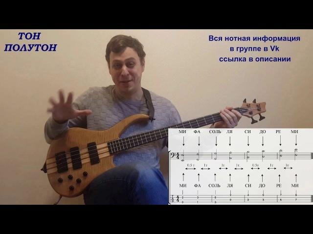 Как быстро выучить ноты на грифе бас гитары (КМБ 7)