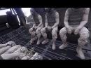 GTA V Military Crew | PS4 | United Empire