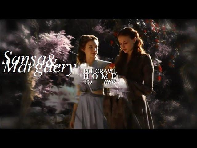 Sansa margaery   i'll crawl home to her