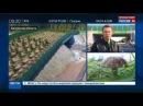 Калуга Первый в России экодук сооружён в 2016 г