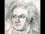 Ludwig van Beethoven - Symphony No. 9 - First movement - Allegro ma non troppo, un poco maestoso