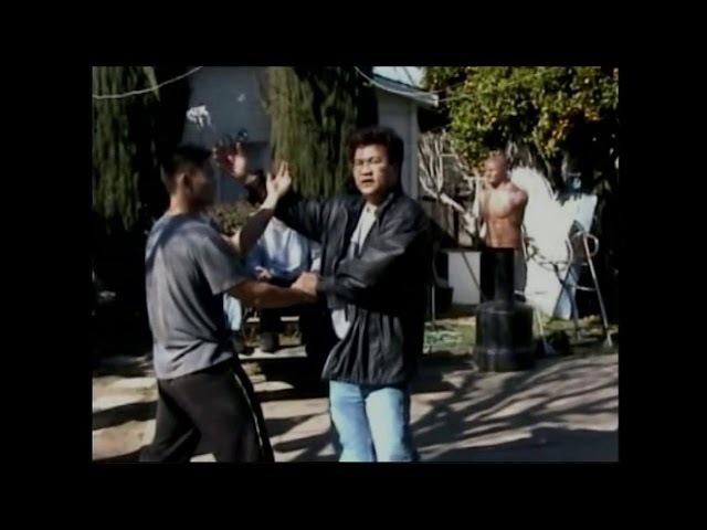 Ving Tsun backyard styl.