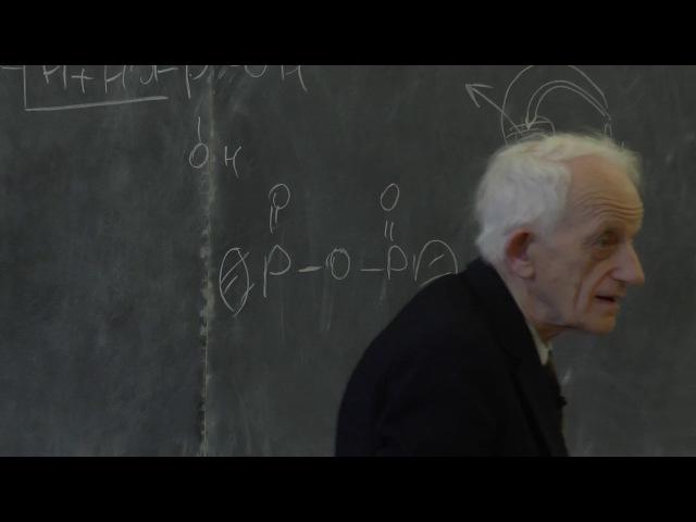 Шноль С. Э. - Введение в биоорганическую химию (Лекция 2)