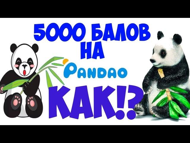 КАК В PANDAO ПОЛУЧИТЬ 5000 БАЛЛОВ