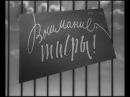 ВНИМАНИЕ ТИГРЫ 1961г На съёмках фильма Полосатый рейс