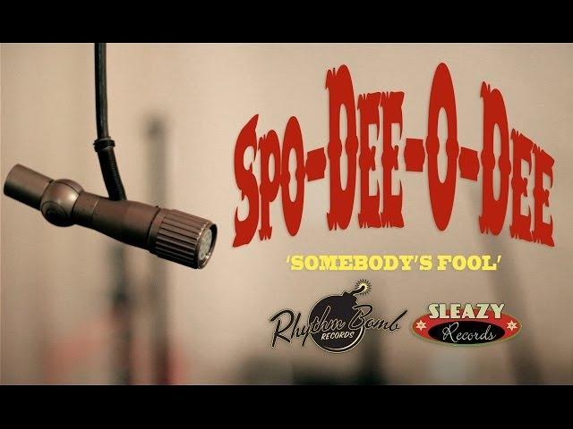 'Somebody's Fool' Spo-Dee-O-Dee RHYTHM BOMB/ SLEAZY RECORDS (music video) BOPFLIX