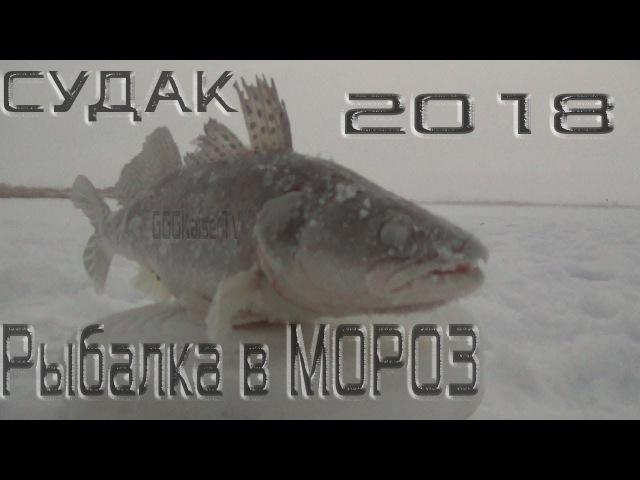 Ловля Судака в 26 С Диалоги о Рыбалке Старый Новый Год 2018 Рыбалка в январе GGG KaiSe