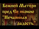 """Божией Матери пред Ее иконою """"Нечаянная радость""""."""
