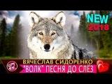Волк - ОБАЛДЕННАЯ песня до слёз
