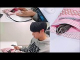 kim seok jin and his sugar gliders Eomuk &amp Odengie