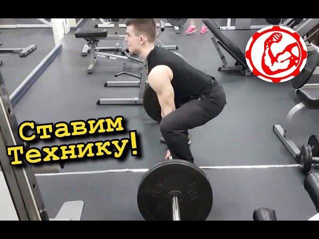 Фитнес курсы - Техника Упражнений: Становая тяга, жим штанги лежа, жим гантелей, п...