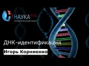 Игорь Корниенко - ДНК-идентификация