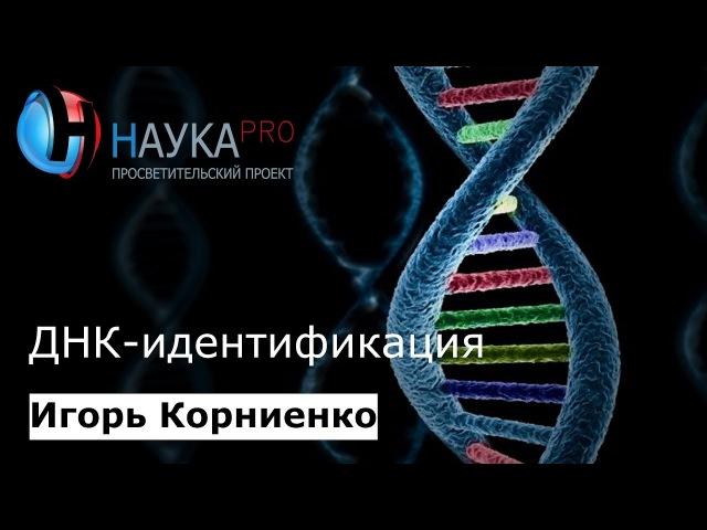 Игорь Корниенко ДНК идентификация