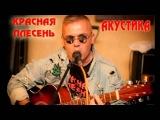Красная Плесень - Ария укуренного Ивана. Акустика. 2014