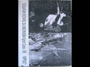 UNDINISM australia split tape 1995 w Squash Bowels