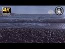 Звуки природы шум моря волны дождь гроза для сна и медитации