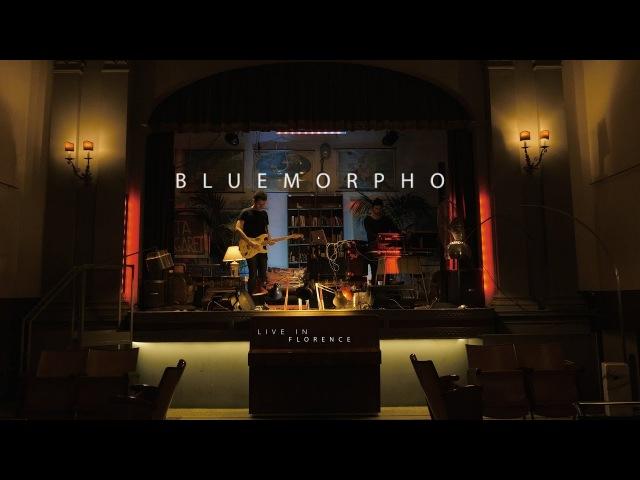 BLUE MORPHO - live in Florence (Full version)