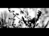 The Joy Formidable - Silent Treatment (William Orbit version)