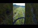 По болоту без глушителя 😬 Чудово болото 9тый километр.