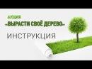 Акция «Вырасти своё дерево» ИНСТРУКЦИЯ