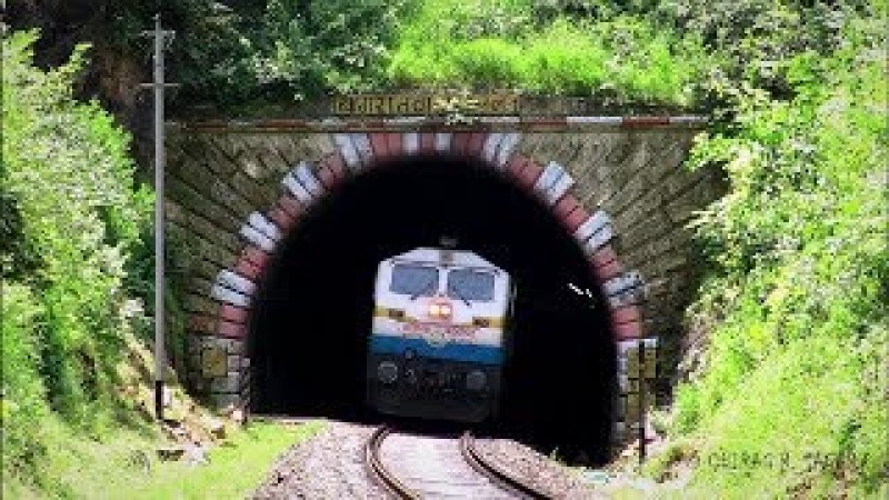 LIVE Train 24/24 Train Driver's View: Cab Ride World Railway in SUMMER and Spring ! Best Great