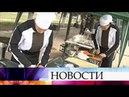В Крыму показывают свое мастерство военные повара и хлебопеки Черноморского флота