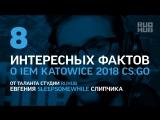 8 фактов о IEM Katowice 2018 CS:GO от таланта студии RuHub sleepsomewhile
