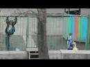 Люди икс апокалипсис - трейлер пародия, смешной трейлер прикол.mp4