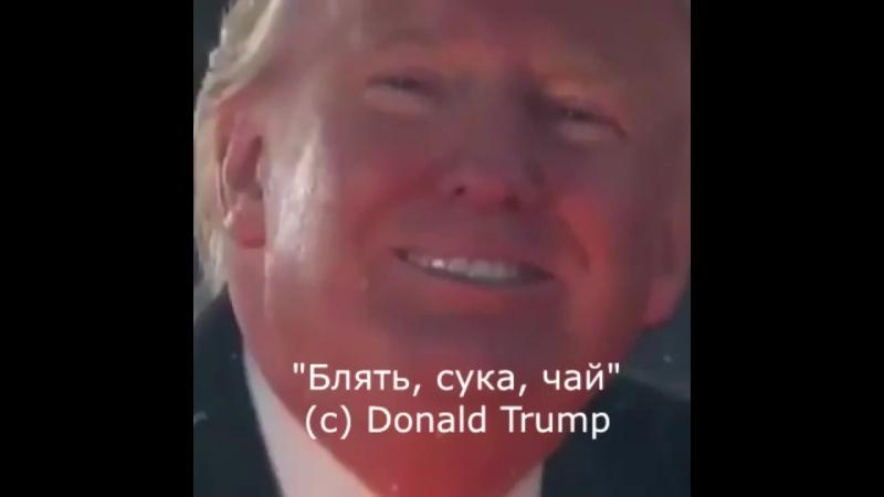 блядь, сука, чай. (c)Trump