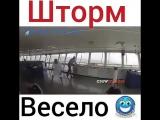 video.prikol___BhscDBZHPeR___.mp4