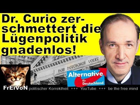 Curio (AfD) zerschmettert Lügenpolitik der Regierung! inkl. Belegen! * Bundestag HD