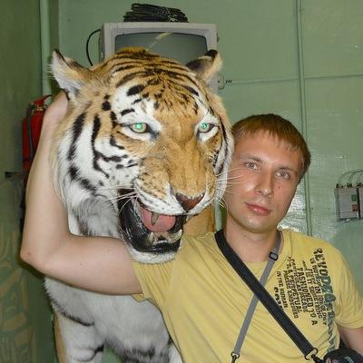 Андрей Остапчук