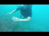С аквалангом на дне моря