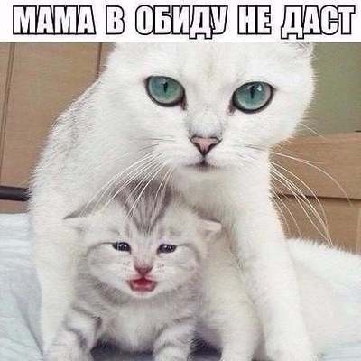 Юлия Распутина