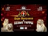 «Цирк Никулина и белые тигры» c 17 марта по 15 апреля