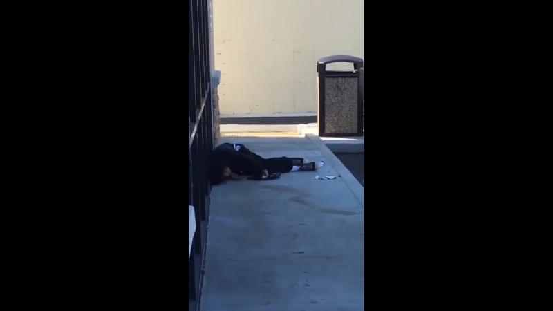 Полицейский в США расстрелял выхватившего у него обойму молодого человека