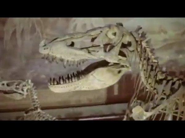 Куда вел след динозавра. 1 серия (1987). Детский фильм | Золотая коллекция