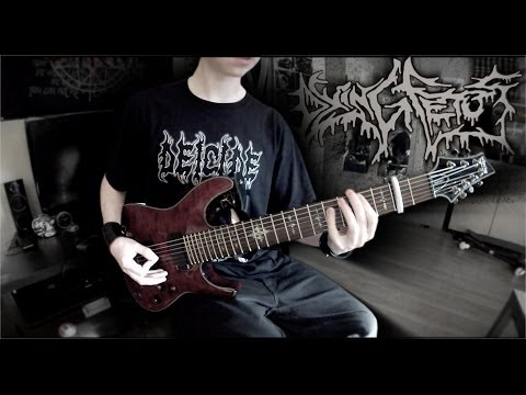DYING FETUS - Streaks Of Blood Guitar Cover By Siets96 (HD)