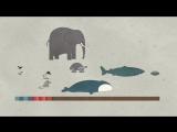 Почему у животных такая разная продолжительность жизни - Озвучка DeeAFilm