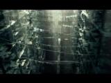 Томек Багински - The Ark