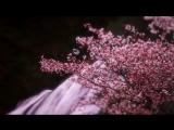 KIDDBUU - Akira [Prod. SorrySines]