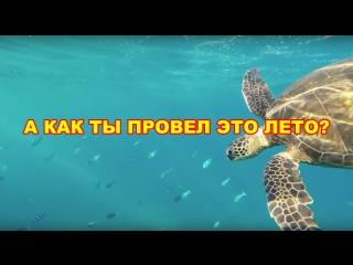 Рома Акустик - Снова лето   А как ты провел это лето ?