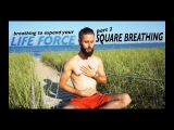 Breathing To Expand Your Life Force Part 2 - Square Breathing
