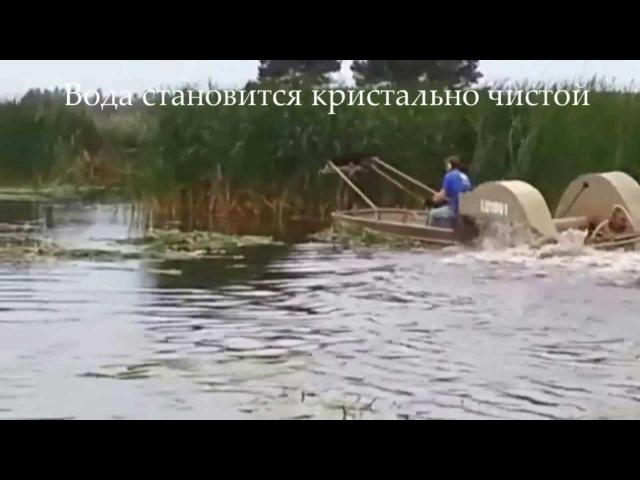 Oчистка прудов, Очистка водоема , эвтрофикация